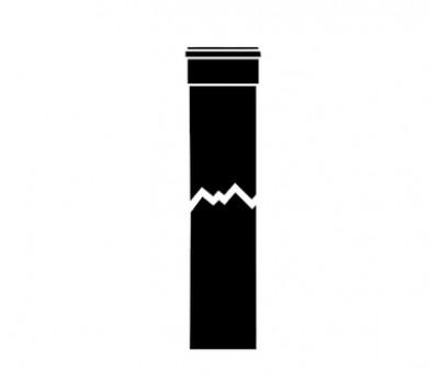 300817 Удлинительная труба D80 , L=1000мм 300817 VAILLANT