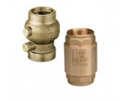 Клапан обратный пружинный DN40